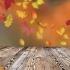 もうすぐ着たい秋のコーディネート🍁